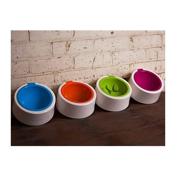 Modern dog bowl collection