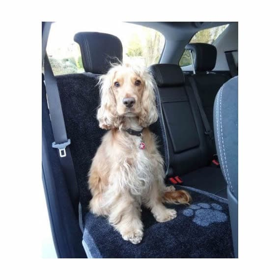 Dog Car Seat cover by Pet Rebellion