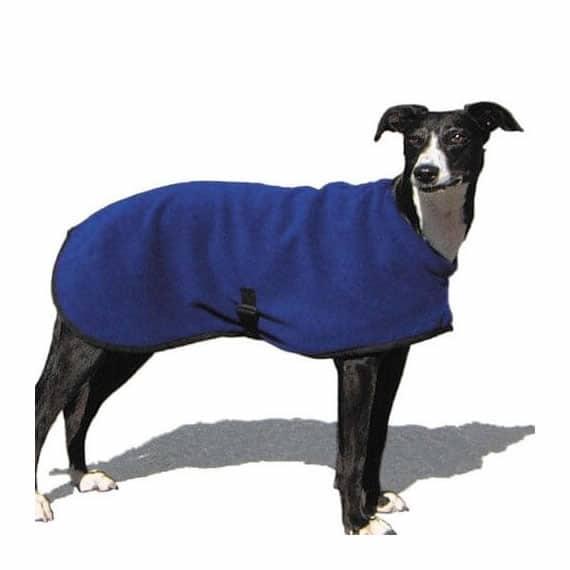 Quality Dog Jacket by Hotterdog