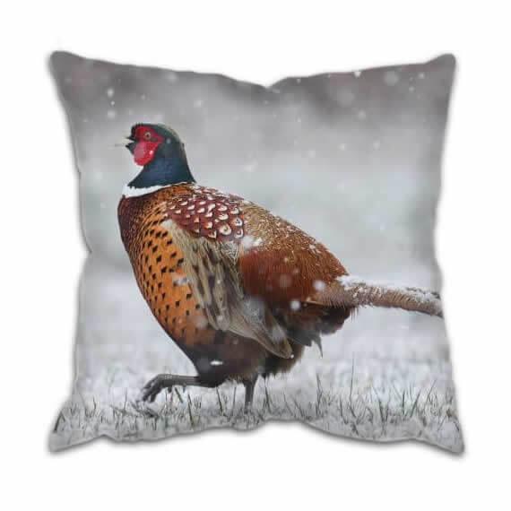 Cushion Pheasant in snow