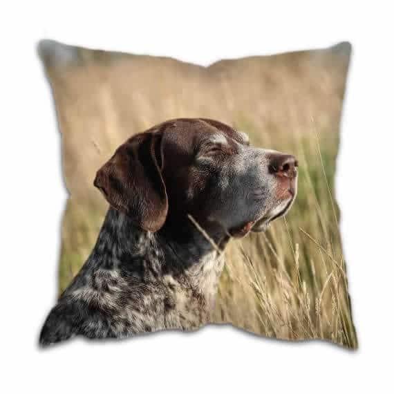 Gun Dog Cushion with Pointer