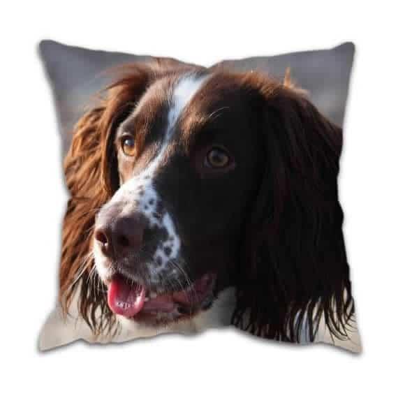 Gun Dog Spaniel Cushion
