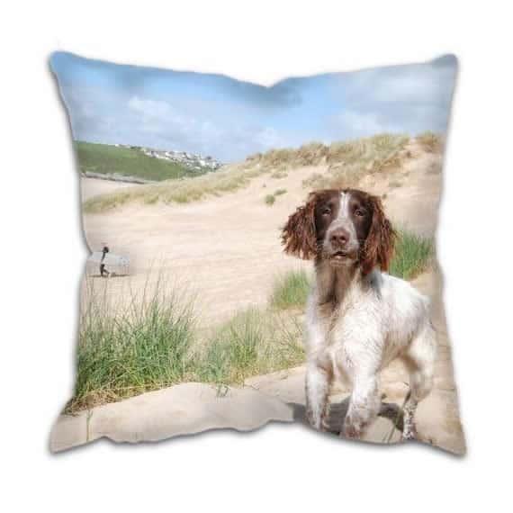 Country Spaniel Dog At The Beach Cushion