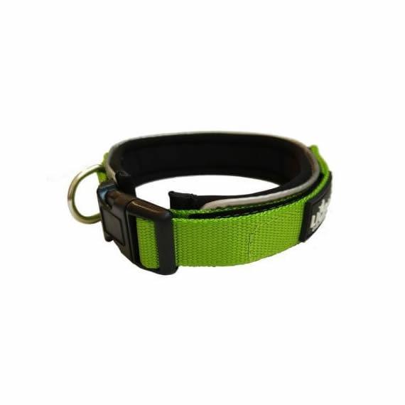 Padded Nylon Collar & Lead Set