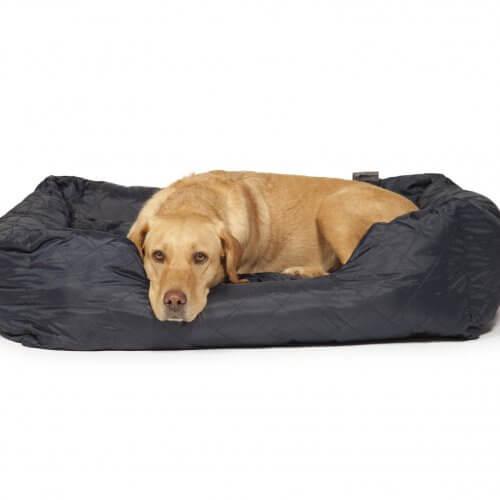 Large Dog Snuggle Balls