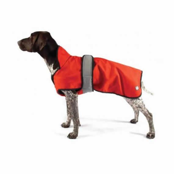 Best 2 in 1 Danish Design All Weather Dog Coat