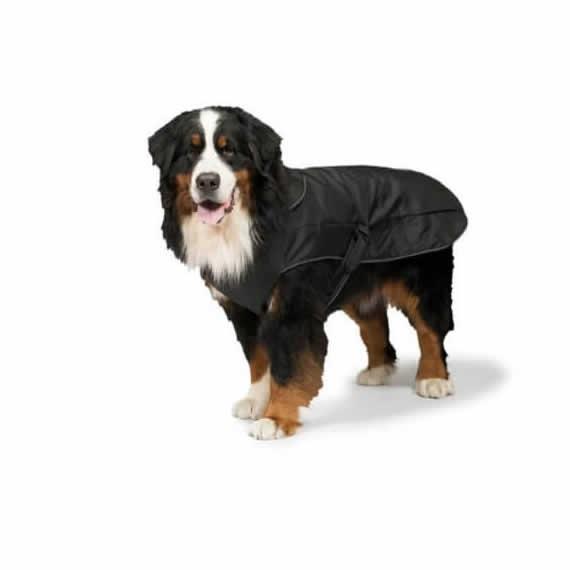 All Weather 2 in 1 Harness Dog Coat Danish Design