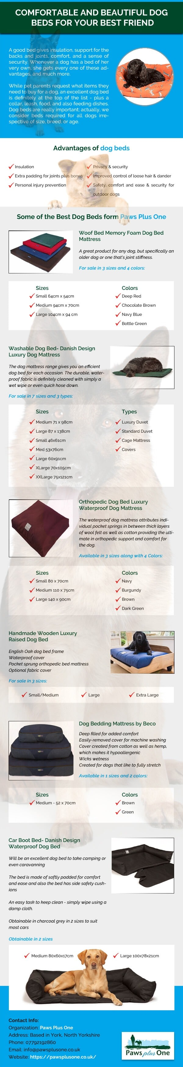 Comfortable and Beautiful Dog Beds