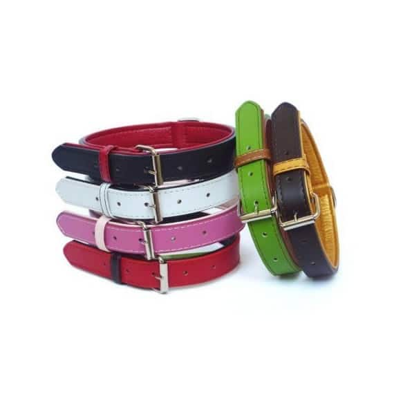 Matching Leather Pet Collars – Collar and Leash