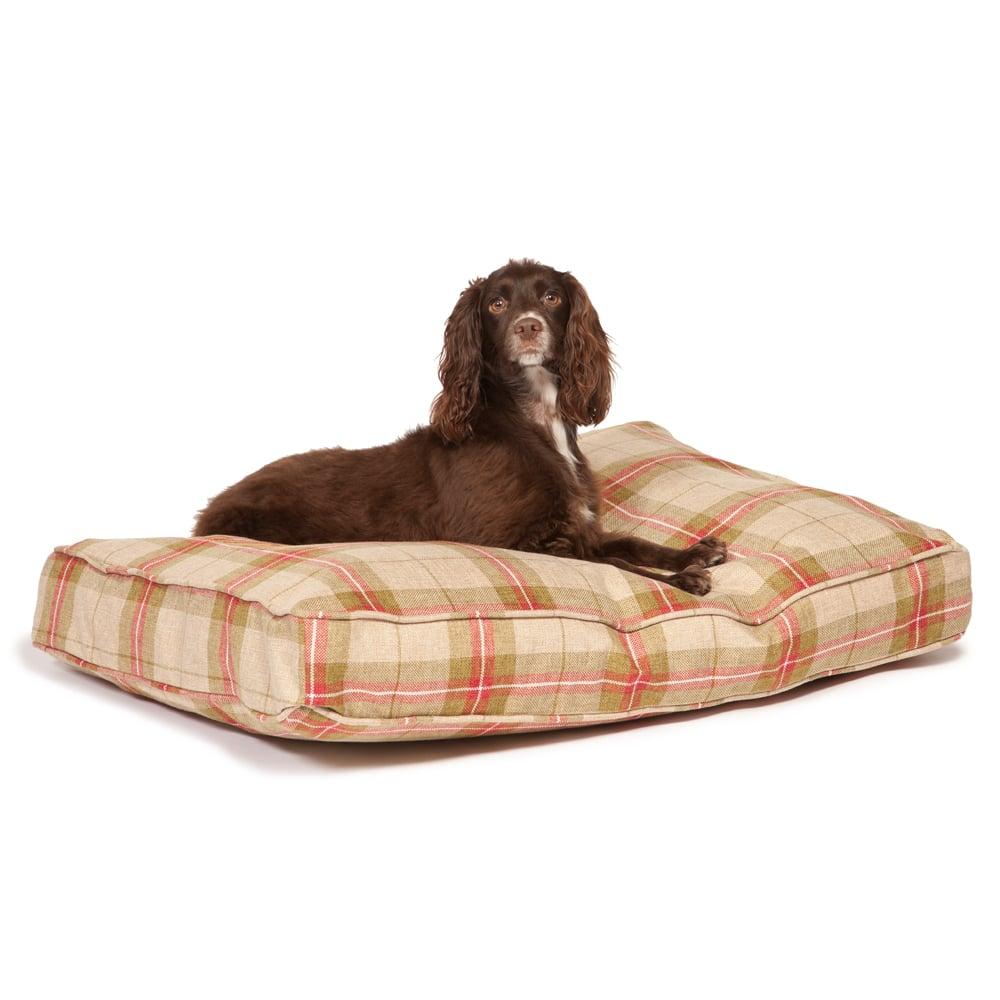 Newton Beige Quality Dog Bed Mattress – Danish Design Beds